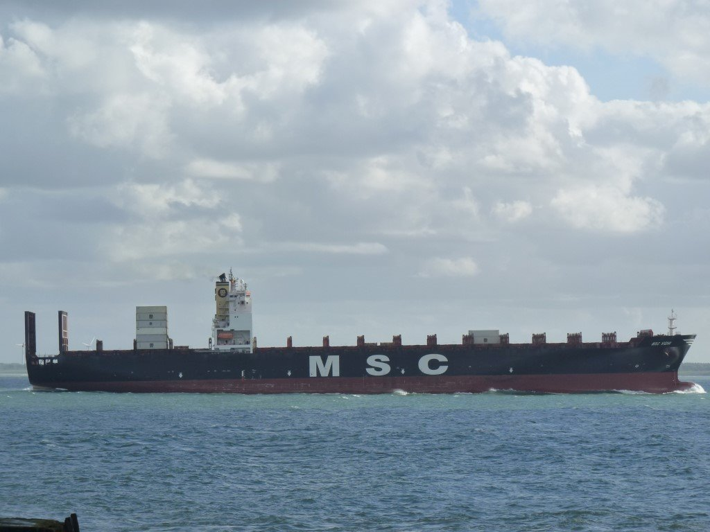 MSC Vidhi Monrovia171003 (9) (Medium).JPG