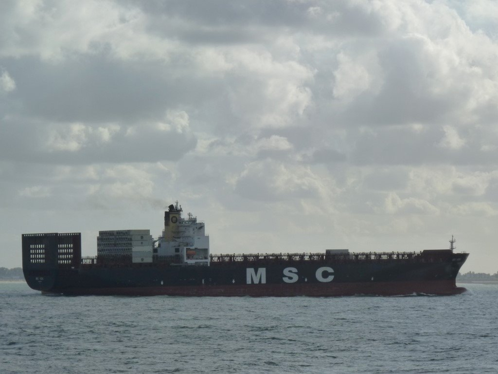 MSC Vidhi Monrovia171003 (11) (Medium).JPG