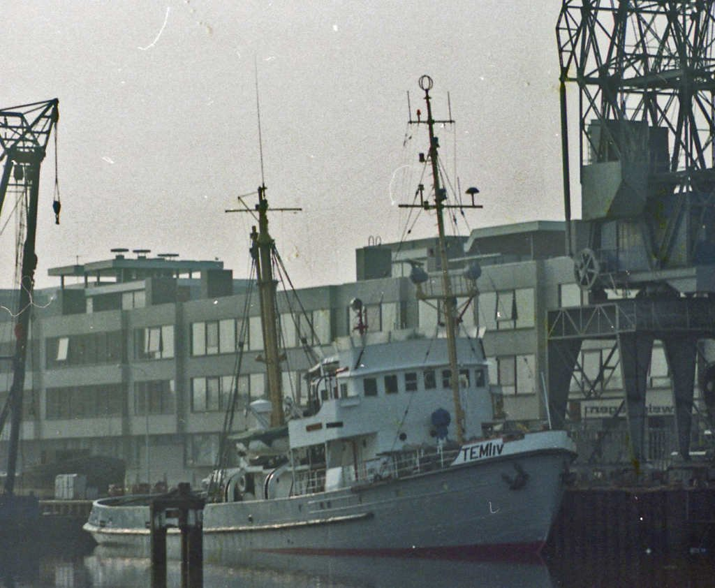 temi IV maart 1981 in harlingen.jpg